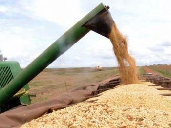O Plano Safra é lançado pelo governo federal no início do ano agrícola, em 1º de julho -Arquivo/Agência Brasil