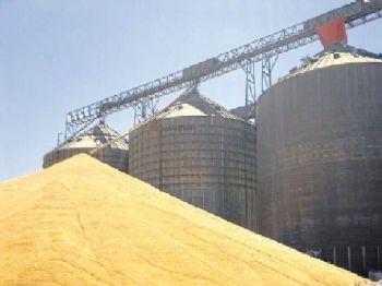 Plano atende a setores como de armazenamento de grãos no Estado - Foto: Valdenir Rezende/Correio do Estado