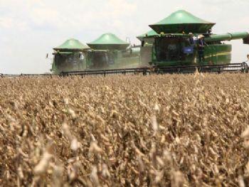 Nos últimos 10 dias o avanço da colheita foi de 18,5% em MS - Foto: Divulgação