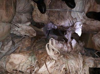 Maconha estava escondida em carga de lixo reciclável - Foto: Assecom DOF